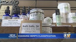 Texas Lawmakers Softening Stance On CBD Oils