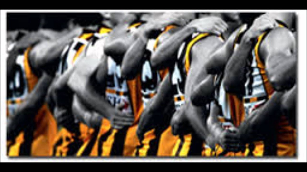 Image result for hawthorn fc