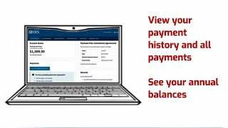 View Your Account Information