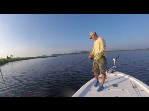 Quick Moring Trip For Speckled Trout Off The Pamlico River, NC