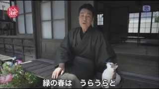 五木ひろし - 夕陽燦燦