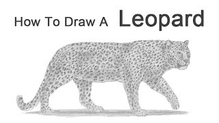 How to Draw a Leopard(Visit http://www.How2DrawAnimals.com or my channel for more animal drawing tutorials and don't forget to PAUSE the video after each step to draw at your own ..., 2014-10-14T06:33:59.000Z)