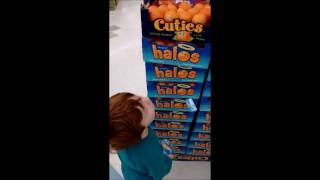 My son is given the choice of whether to buy the Cuties or Halos br...