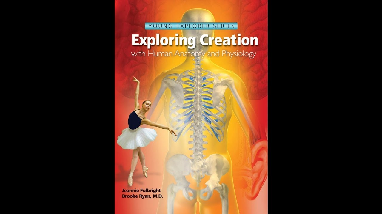 Apologia Exploring Creation: Anatomy and Physiology (Young Explorer ...