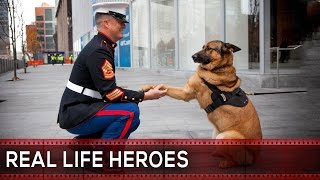 ᴴᴰ REAL LIFE HEROES | 2015 | Faith In Humanity Restored | Part 5