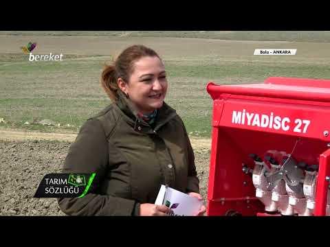 Tarım Sözlüğü - Kimyon Yetiştiriciliği