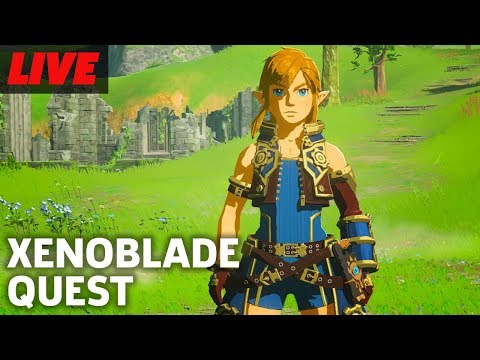 Finding the Xenoblade Chronicles 2 Armor in Zelda Breath of the Wild