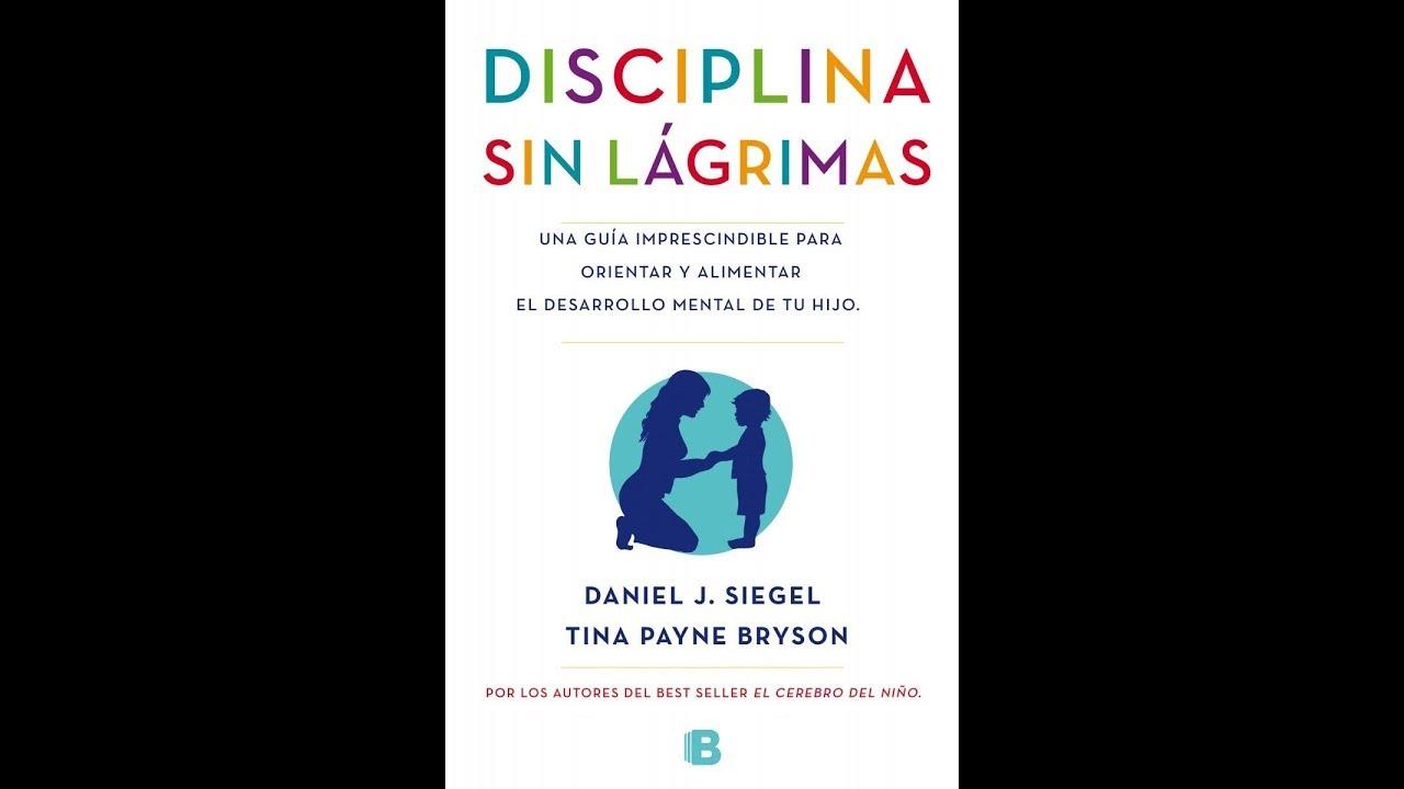 Disciplina Sin Lagrimas Analisis Youtube