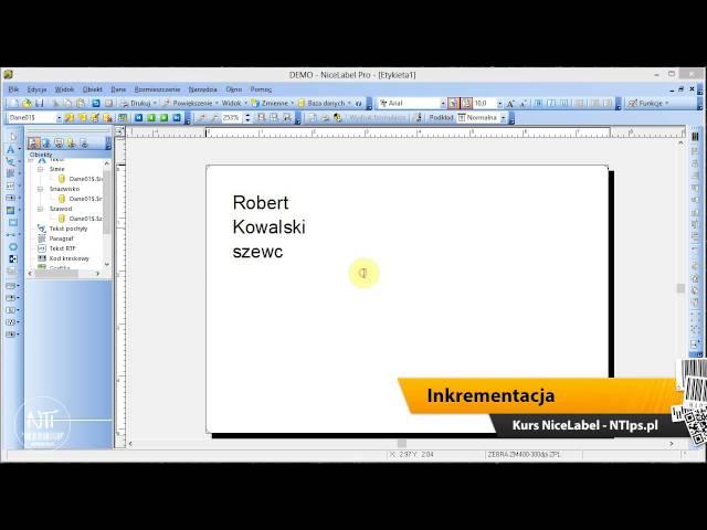 Kurs NiceLabel 04 - Baza danych i inkrementacja