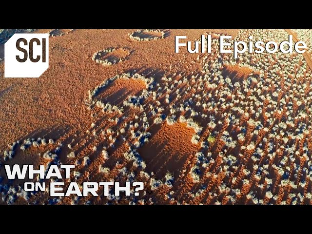 Mysterious Rings in the Namib Desert | What On Earth? (Full Episode)