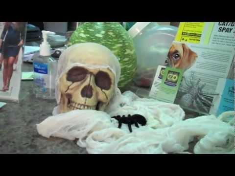 Halloween At Shelter Hope Pet Shop