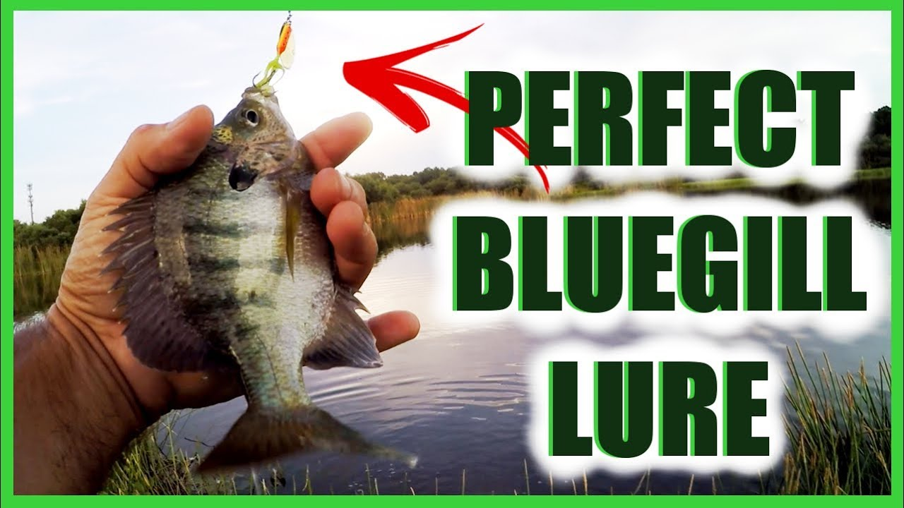 Lure Good For Catching Panfish Bream Bluegill (Ultralight Fishing)