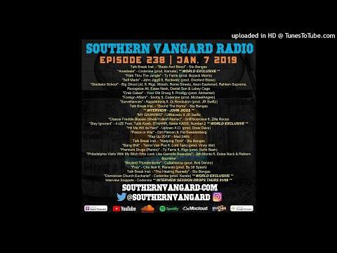 Episode 238 - Southern Vangard Radio