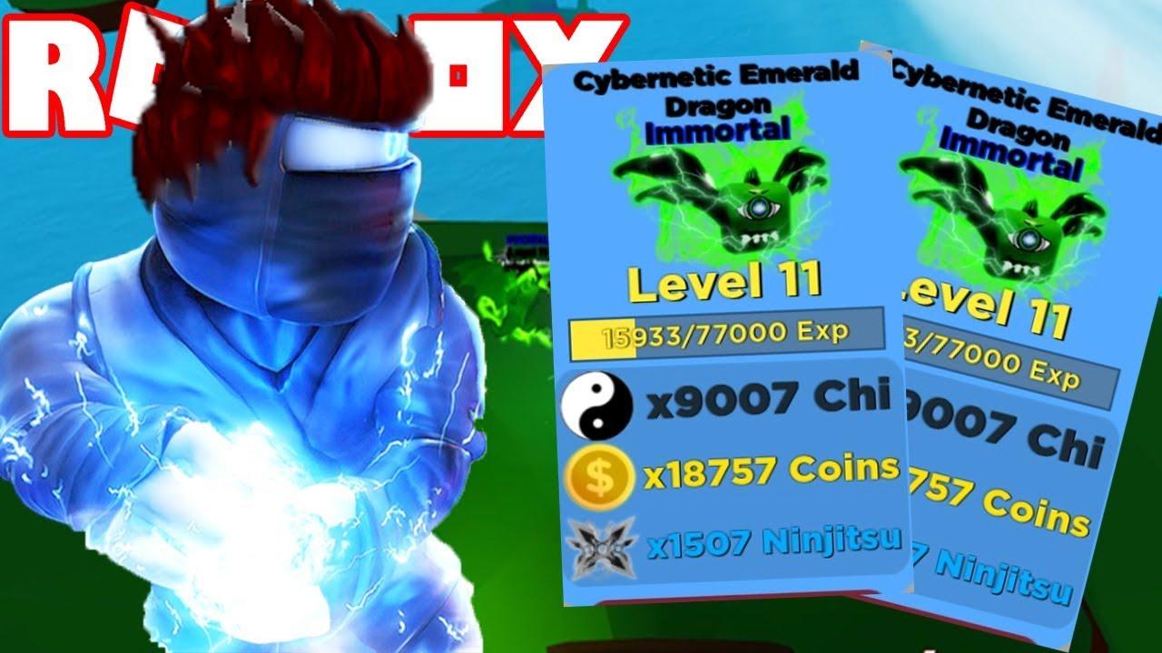 Roblox – Trở Lại Huyền Thoại Ninja Sao Update Và Nhận Được Pet Immortal Siêu Chiến | Ninja Legends