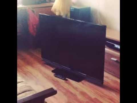 1185991641, размещено вчера в 17:23. 1243 (+4). Продаю телевизор samsung— фотография №1. Отдаем надежный телевизор samsung ps 42c430a1w не дорого на запчасти или под восстановление. Ребенок ударил ногой и разбил дисплей. Теперь купили новый а это решили продать. Пожаловаться.
