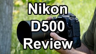 Nikon D500 Review, A Wildlife Photographer's Perspective
