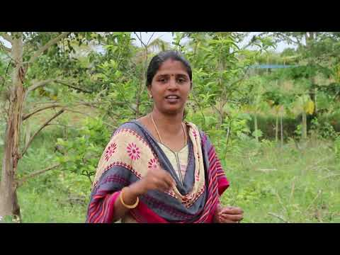 Natural Farming | Multi crop cultivation | Tamil Interview - 2