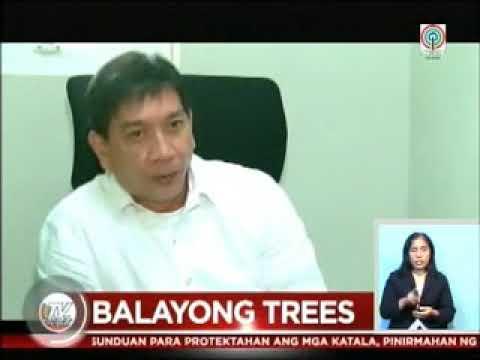 TV Patrol Palawan  - Sep 19, 2017