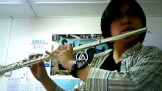 The Day That Never Comes: Flute Cover Part 1