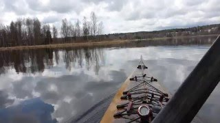 Seagulls Ought Not expect an attack from a kayak at Lake Vanaja
