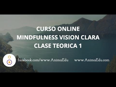 Curso Mindfulness de Vision Clara - Clase Teórica 1