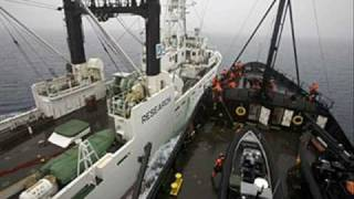 Sea Shepherd Clashes and Drives Japanese Whalers Out of Australia