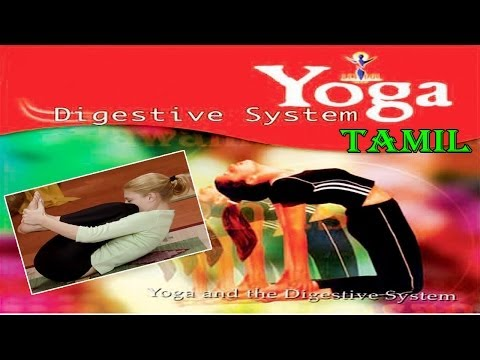 YOGA & DIGESTIVE SYSTEM - Your Yoga Gym - Tamil