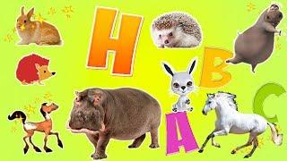 Karikatür Hayvanlar Çocuklar   H Harf İçin Alfabeyi Öğren