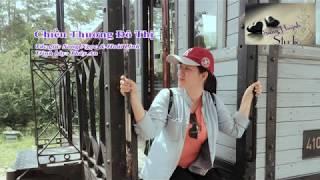 Chiều Thương Đô Thị - Thúy An guitar Sang Huỳnh