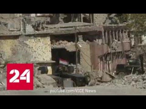 Казни в Ираке: убитых выдают за террористов