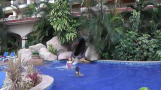 Hotel Barcelo Puerto Vallarta Mexico Vacation