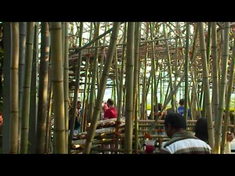Big Bambú by Doug & Mike Starn, on the Roof at the Met
