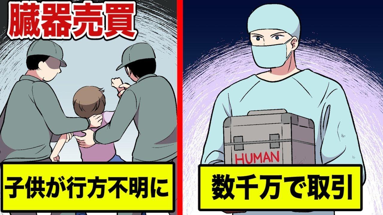値段 臓器 売買