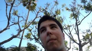 Vlog - En Broadway + El Cambio Horario