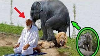 Allah ki kudrat !