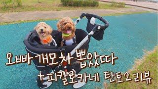 강아지유모차추천/애견용품리뷰/피콜로카네탄토2/소풍