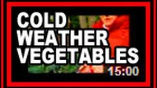 Cold Weather Vegetables - Wisconsin Garden Video Blog 553
