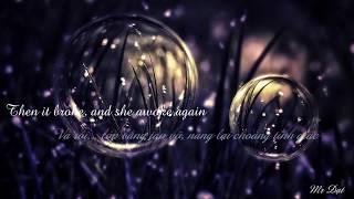 (Vietsub - Lyrics) Lily - Alan Walker; K-391; Emelie Hollow