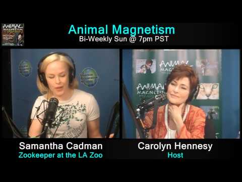 Animal Magnetism April 19, 2015 with guests Bill Konstant and Samantha Cadman