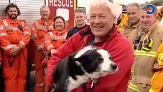 The dramatic, dangerous three-hour mission to rescue a dog stuck on a cliff