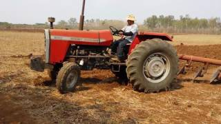 Massey 290 Dany chilin. Arando