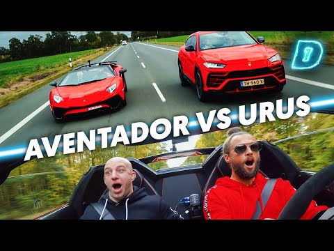 LAMBO vs LAMBO! // DAY1 Daily Driver