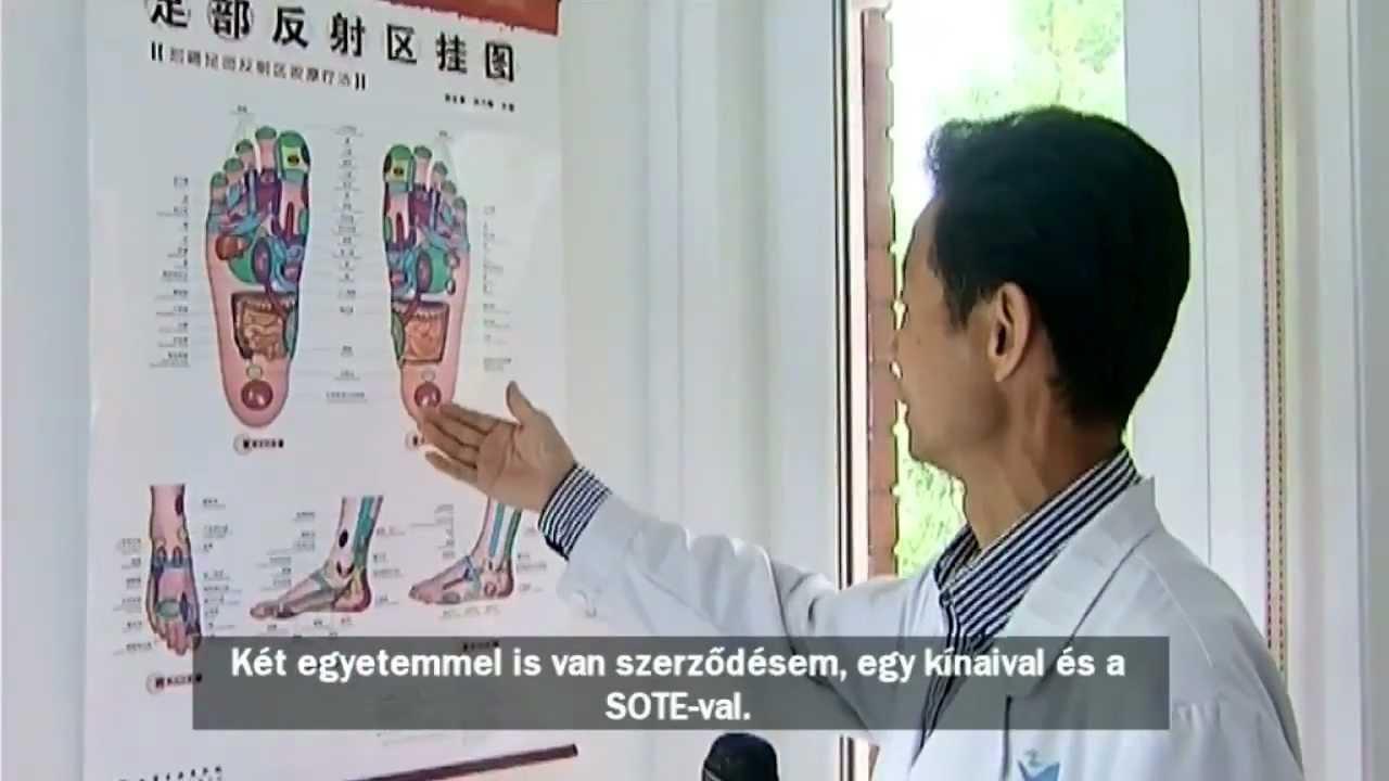 paraziták elleni hagyományos orvoslás