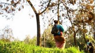 Aflora - Escuchalo (Vídeoclip oficial) YouTube Videos