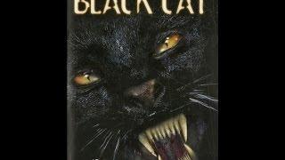 Очень страшная кошка.Horor cat, ужасы с кошкой.