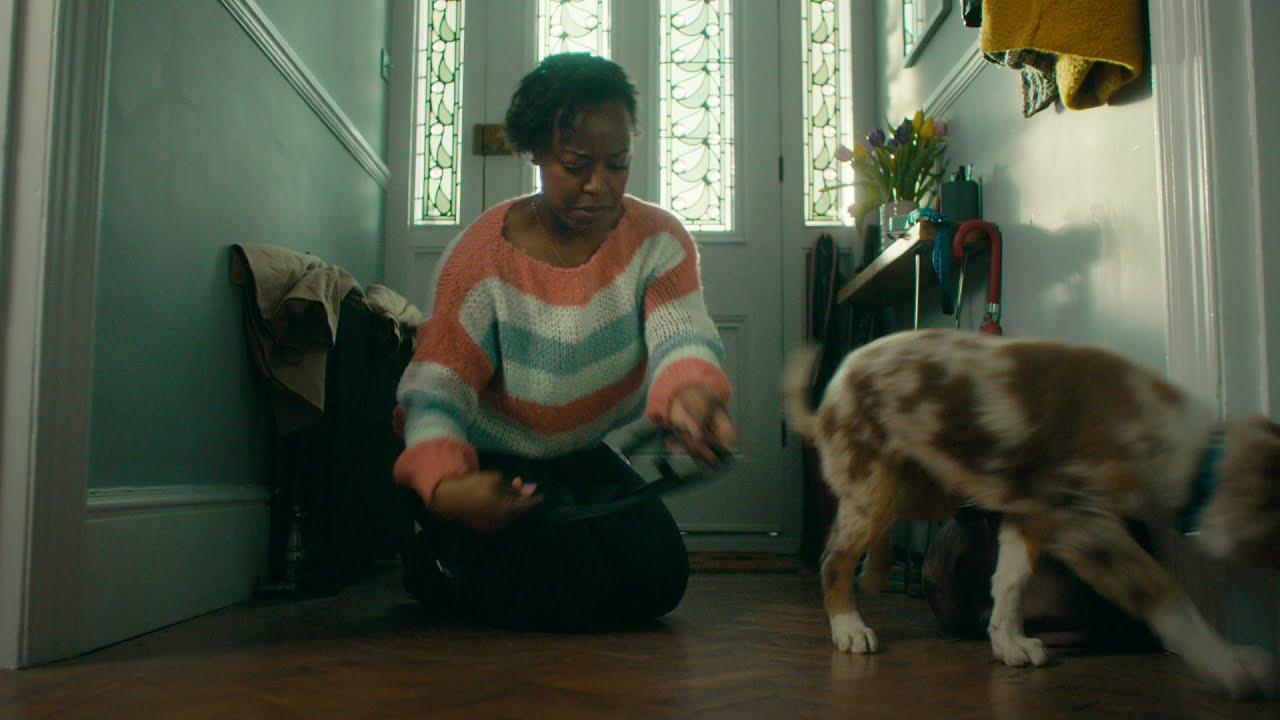 Pets at Home Puppy & Kitten club - TV advert - September 2021