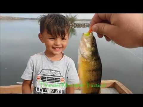 Big Perch Crappie & Bass Fishing /CJ Strike Snake River Idaho