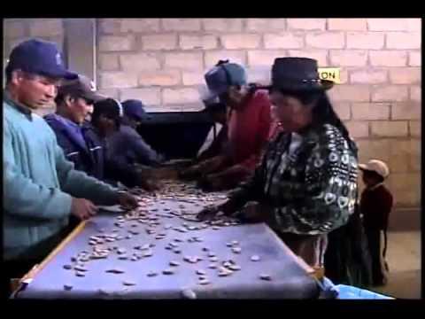 """municipio  San Lucas chuquisaca """"BOLIVIA"""""""