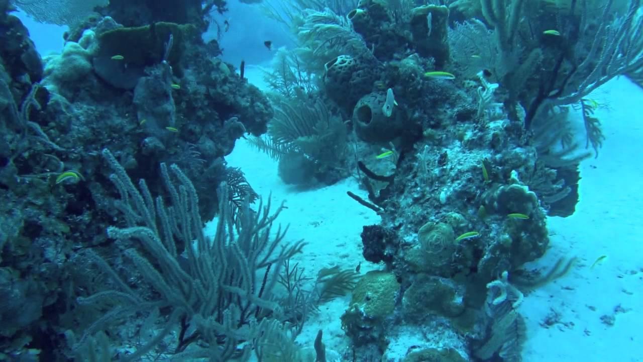 Freeport Bahamas Scuba Diving Gopro Hero 3 White