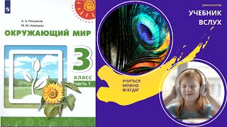 "Окружающий мир 3 класс ч.1, тема урока ""Свет знания"", с.4-7, Перспектива"